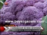 Türkiye'nin İlk Renkli Karnıbaharı