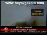 Şili'de Tsunami