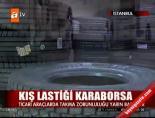 Kış Lastiği Karaborsa online video izle