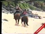 Atın Teptiği Köpek Kendine Gelemedi