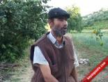 Zabıtadan İnegöl Filmi: Sivrikaya