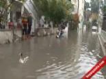 İzmir'de Göle Dönüşen Yollarda Kazlar Yüzdü