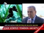 izmir korfezi - İzmir Körfezi yeniden hayatta