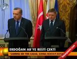 slovakya - Erdoğan Ab'ye resti çekti