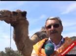 Sarıkeçili Yörükleri Geleneksel Göç Kervanını Barış Yılı Olarak Kutladı