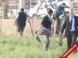 harran universitesi - Şanlıurfa-Akçakale Yolu Üzerinde Trafik Kazası