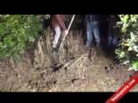Adana'da Kepçe Operatörünü İşkenceyle Öldürüp Gömdüler