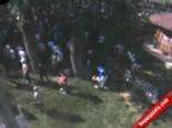 Piknik Alanındaki Ağaç Dehşeti Kamerada