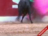 Matador Ölümden Döndü