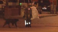 Temizlik Görevlisinin Sokak Köpeği İle İmtihanı