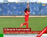 Galatasaray Transfer Haberleri-Listesi (Tarık Çamdal-Dzemaili-Pandev) 1 Eylül 2014