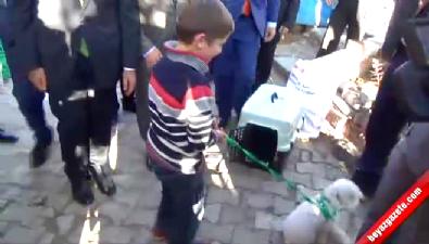 Cumhurbaşkanı Erdoğan, Hayvansever Ömer Faruk'a Köpek Hediye Etti