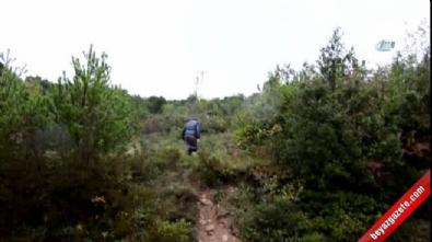 'Trüf Mantarı'nı köpekler buldu, kilosu 3 bin 500 Euro