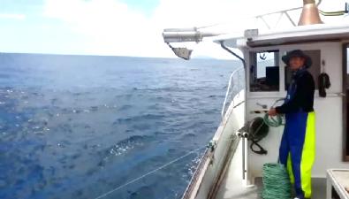Çılgın balıkçı denizde balık bırakmadı!