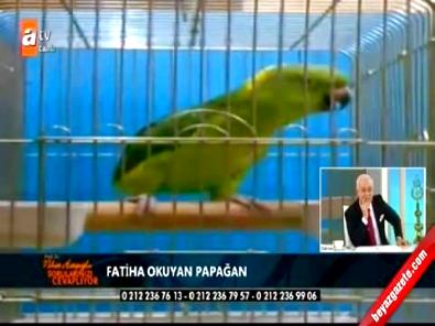 Fatiha Suresini okuyan papağan Nihat Hatipoğlu'nu şaşırttı!