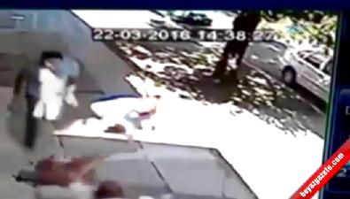 Pitbull kadın ve köpeğine böyle saldırdı
