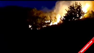 Bodrum'daki yangın halkı tedirgin etti