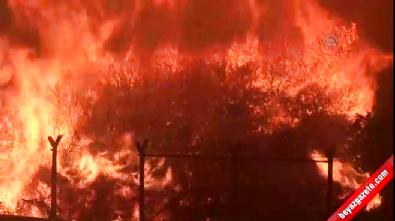 İzmir'deki yangın zor kontrol altına alındı