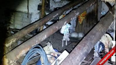 Siirt'te aşırı yağışlar sonucu ev çöktü