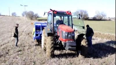 'Buğdayın atası' siyezin geç dönem ekimi yapılıyor - KASTAMONU