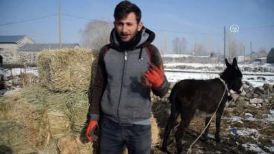 Doğu Anadolu'da soğuk hava - AĞRI