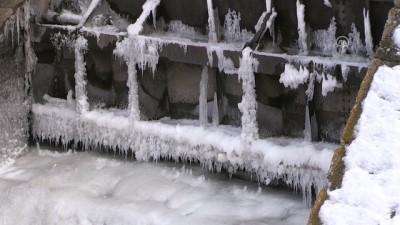 Soğuk hava barajı dondurdu - KARS