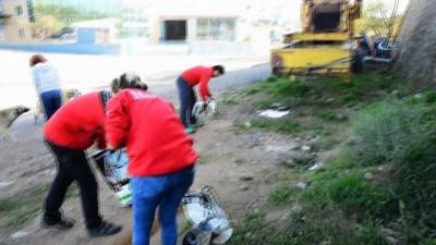 Yüzlerce sokak hayvanını beslemek için yarım ton mama dağıttılar