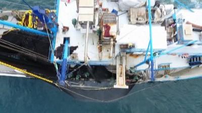 Hamsi soğuk sulara kaçtı...Sinoplu balıkçıların hamsi avı havadan görüntülendi