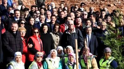 Muğla'ya 'Uluslararası Göçmenler Günü Hatıra Ormanı'