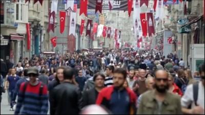 - İstanbul kedileri Rus sinemalarında