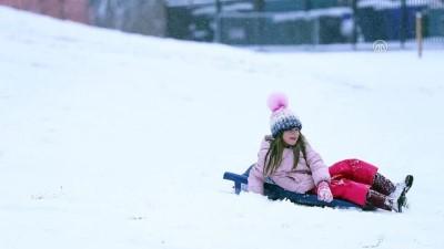 ABD'de kar yağışı - CHICAGO