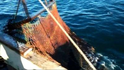 Genel Müdür Atalay, denizde salyangoz avcılığını inceledi