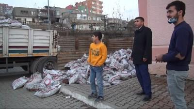 Şırnak'ta 10 bin aile kömür yardımı yapılıyor