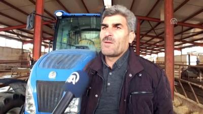 Varto'ya devlet desteğiyle modern hayvan çiftliği kurdu - MUŞ
