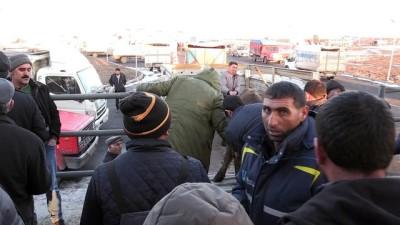 Kars'ta 180 damızlık boğa dağıtıldı