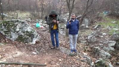 Kayalığa sıkışan köpek kaderine terk edildi