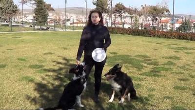 Bir köpek aldı hayatı değişti