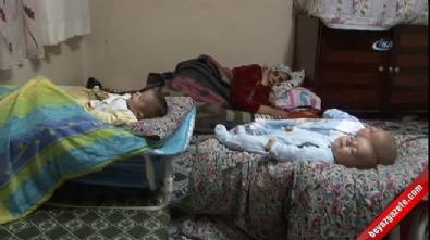 Suriyeli ailenin Erdoğan sevgisi, üçüz bebeklerine isim oldu