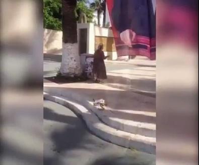 ataturk - Yaşlı kadın Atatürk posterini defalarca öptü