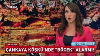 Beyaz Tv Ana Haber 28 Mayıs 2017