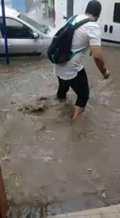 Yağışta mahsur kalan kediyi vatandaş kurtardı