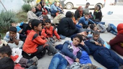 Hatay'da 51 mülteci yakalandı