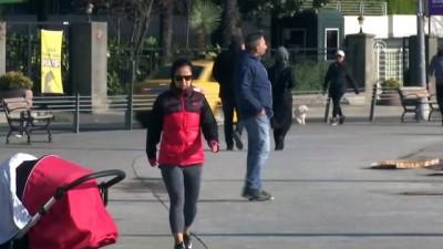 İstanbul Boğazı'nda istavrit bolluğu - İSTANBUL