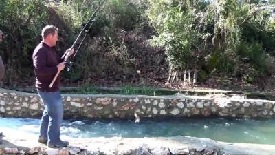 '3 bin balığım sulara gitti' - ANTALYA