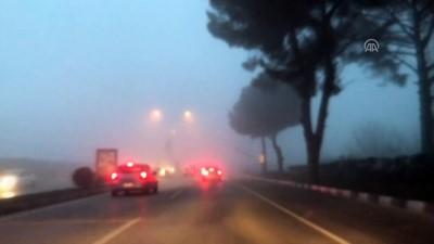 Yoğun sis - MANİSA