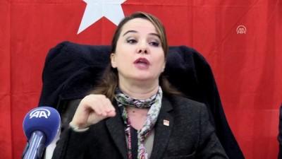CHP Spor Kurulu Doğu Anadolu Bölge Toplantısı - VAN