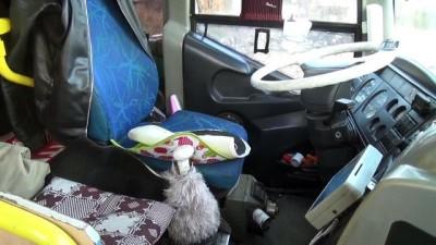 Halk otobüsünün elektrik devresini keserek bozuk para çaldılar