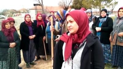 Kur'an Kursu kadın öğrencileri mezarlığı ağaçlandırdı