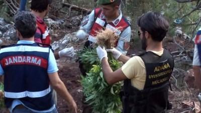 Adana'da 1 yılda 48 milyon 616 liralık uyuşturucu ele geçirildi
