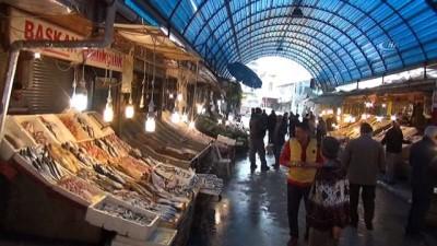 Balıkçıların ağına 'Sapan' balığı takıldı